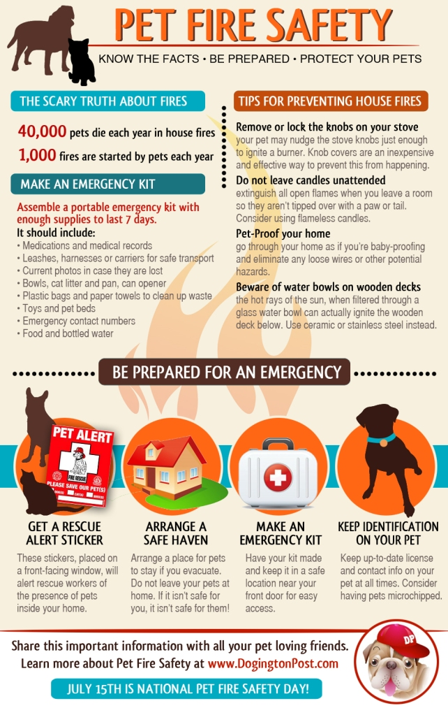 PET-FIRE-SAFETY-INFOGRAPHIC