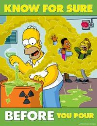 Homer14